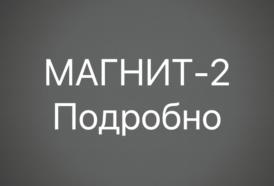 Подробнее о двери Магнит-2